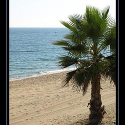 Beach on a summersday