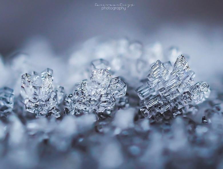 Ijs kristallen. - De winter is nu dan echt gearriveerd in Nederland! <br /> <br /> Sneeuw, ijs &amp; kou.. <br /> Dit levert mooie verschillende vo
