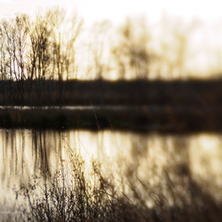 Tegenlicht en spiegeling