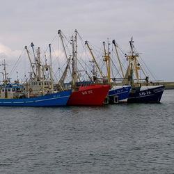 Veenhaven bij Lauwersoog.