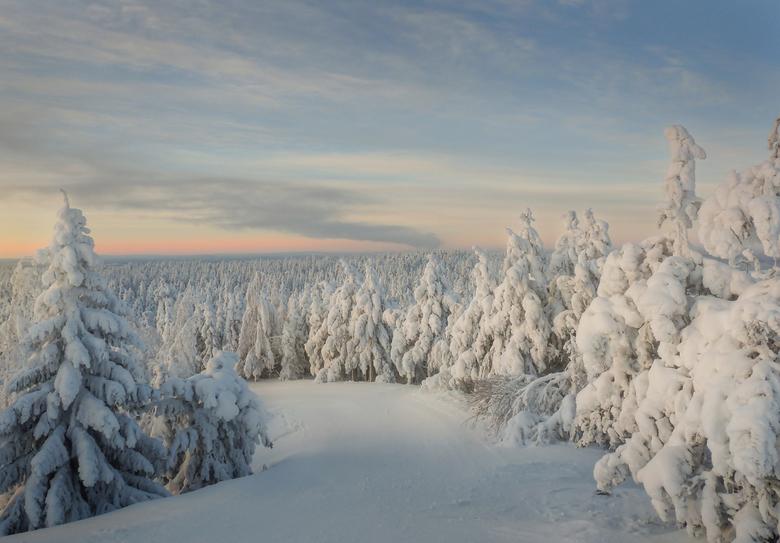 """Snowy forest - Vandaag is de meteorologische winter begonnen. Tijd voor een (re-edit van een) winterse plaat <img  src=""""/images/smileys/smile.png""""/>"""