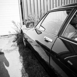 Lee Friedlander - self portrait