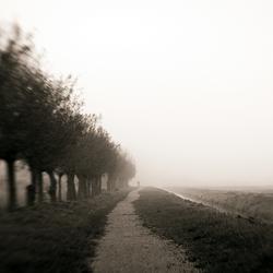 Ochtendwandeling (Into the Great White)