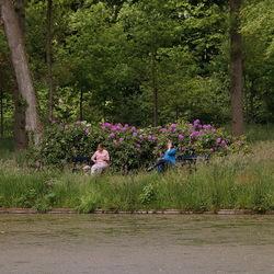 Landgoed Het Laer in Ommen.