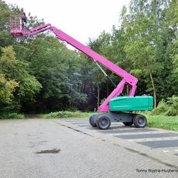 pink/hoogwrker