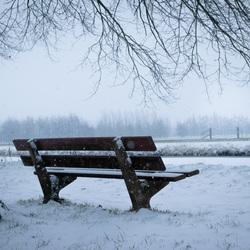 Bankje in een besneeuwd bos