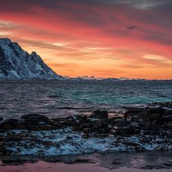 Sunrise Lofoten