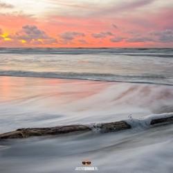 Aangespoeld, strand Paal 9 op Texel.