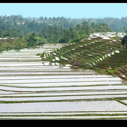 Indonesie 07