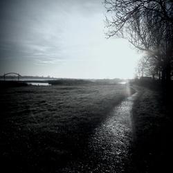 Op een ochtend langs de Lek