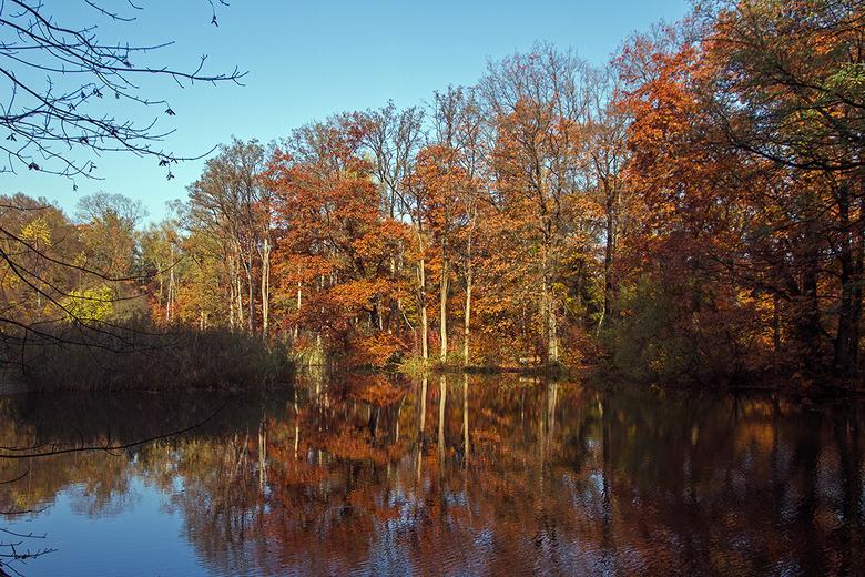 Herfst spiegelingen -