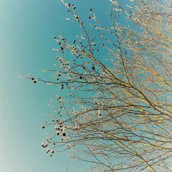 Winters zonnetje