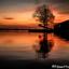 Sunset Jisp