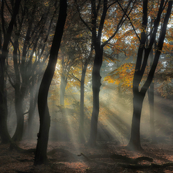 Magisch licht
