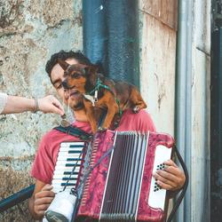 De straatmuzikant en zijn hondje
