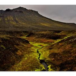 mos en bergen IJsland