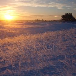 sneeuw op het kootwijkerzand