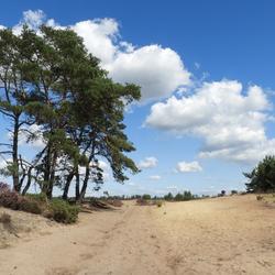 Grenspark, wandelroute Mier