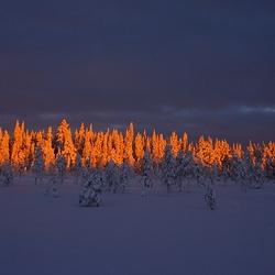 Zonsondergangs kleuren