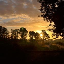 S'morgens vroeg in Hoorndermeden.