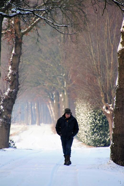 wandelaar - wandelaar in de sneeuw in de mooie natuur <br /> 3-1-2019