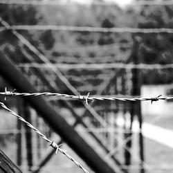 Westerbork II