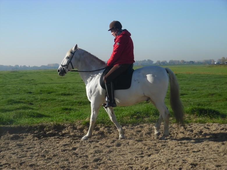Time for a ride - Lekker even wat paardrijden...<br /> <br /> (en raad eens wie de ruiter is?)