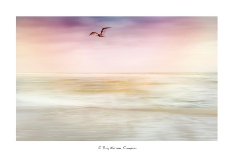 """Flying Home - Eentje in de serie """"Natural Art"""""""