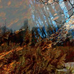 Landscapes: wysiwyg