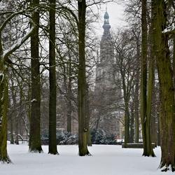 grote kerk breda in de sneeuw.JPG