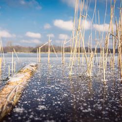 Winter in Winterswijk