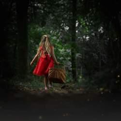 Roodkapje in het donkere bos
