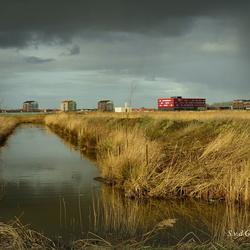 Park de polder