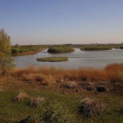 natuurgebied Amerongen.