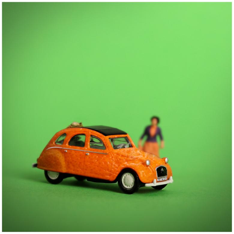 mandarijneend - Geinspireerd door een foto van Wouter (frodo2004) ben ik zelf ook op zoek gegaan naar een mandarijneend. En ja hoor, ik heb er een op