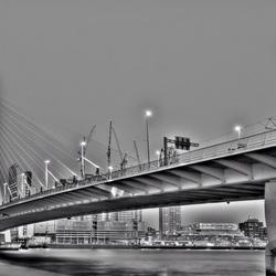 De Zwaan in Rotterdam