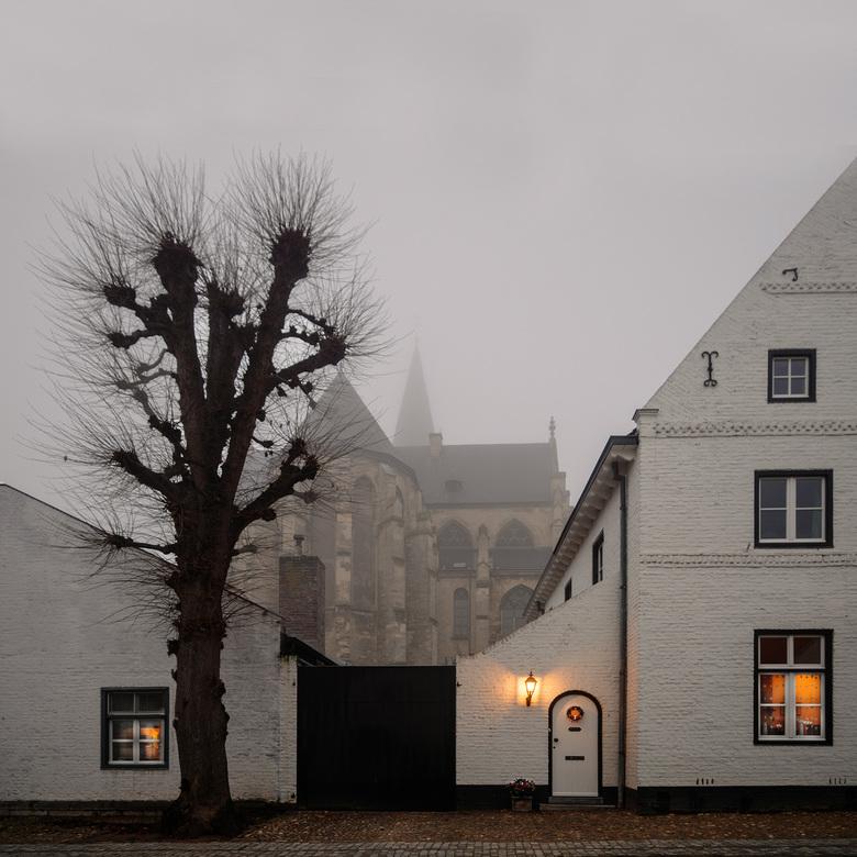 Aanvriezende mist in Thorn - Aanvriezende mist in het witte stadje Thorn in Limburg