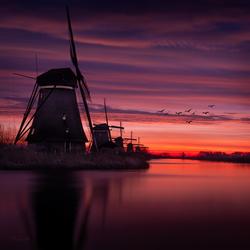 Kinderdijk - Classic shot
