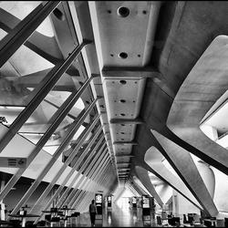 Calatrava Valencia 10
