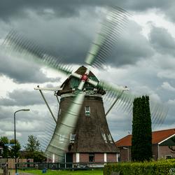 oranjemolen-Wenum Wiesel