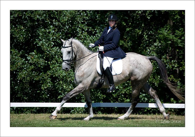 Dressuur - Vandaag en morgen zijn er paardendagen in Woerden.<br /> In het park wordt de dressuur gereden.