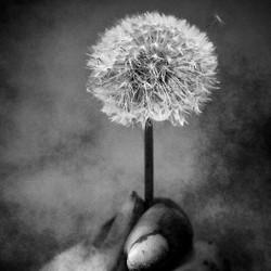 Blow away..