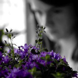 Dreaming......JPG
