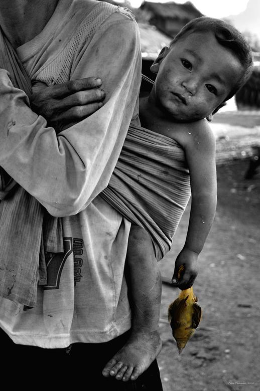 Het jonge leven en de dood - Het kleine jongetje op de rug van zijn vader in Laos heeft het kleine dode vogeltje in zijn hand en heeft een wat apathis