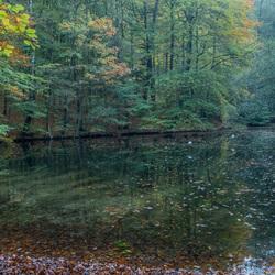 Herfst- Sonsbeekpark.2