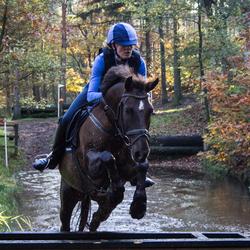 Paardencross 2