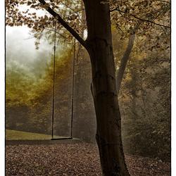 Schommel in de mist