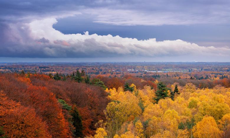 Herfstkleuren - Wat kan ik genieten van deze mooie herfstkleuren. Hoe lang zullen we er  nog van kunnen genieten voordat de winter zijn intrede doet?