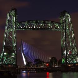 Bridges of Rotterdam