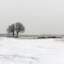 Wintersweer